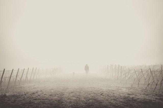 niebla-cerebral